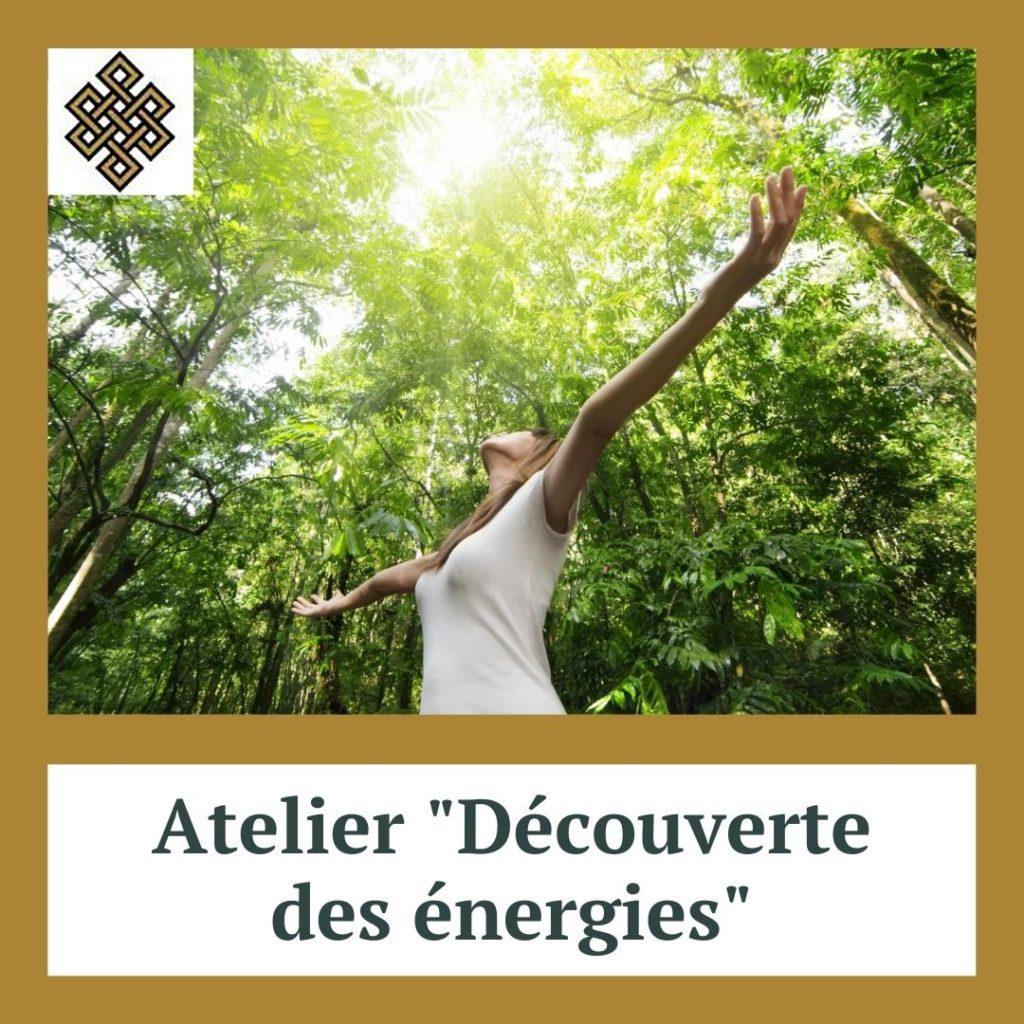 Découverte des énergies